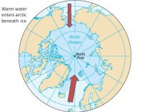 Arctic ice refreezing after falling short of 2007 record  water into arctic thumb